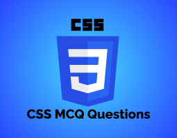 CSS MCQ Questions
